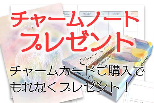 【キャンペーン!チャームノートをもれなくプレゼント】チャームカード・送料込