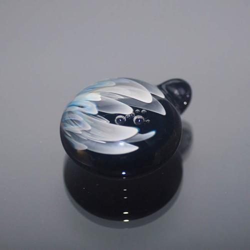 Topnoch Aqua Time Capsule 20170809