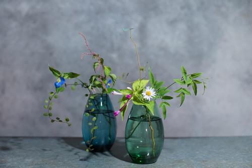 切り花付きグラデーション硝子花器(2種)