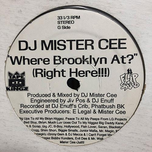 DJ Mister Cee - Shake Dat Ass Girl (12inch) Flip Squad Allstars  [hiphop] 試聴 fps200514-9