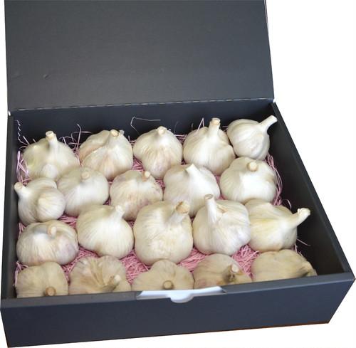 令和2年 新物 北海道常呂(ところ)町産 ピンク種 にんにく Lサイズ以上 9月、10月限定販売 (1.5kg×1)