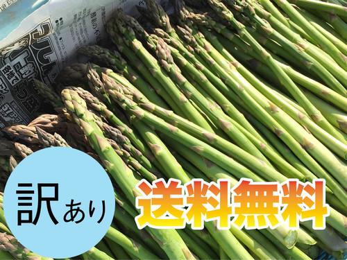 【訳あり】美瑛産グリーンアスパラガス 1kg【送料無料】