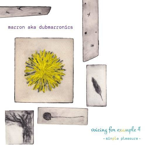 marron aka dubmarronics / voicing for example 4 - simple pleasure -(CD)