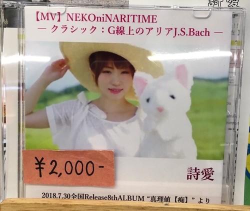 【MVDVD】NEKOniNARITIME(8thALBUM真理値【痴】収録)