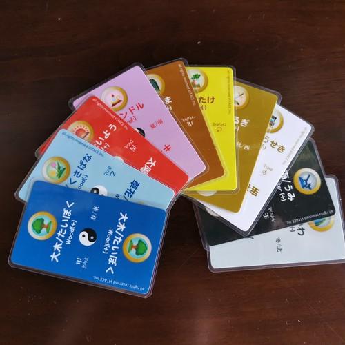 VITACE氣質カード100枚セット