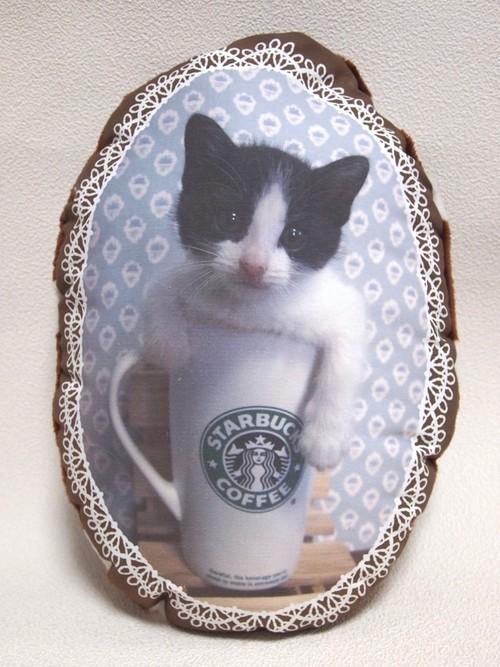 子猫ののフォトクッション[マグカップ]