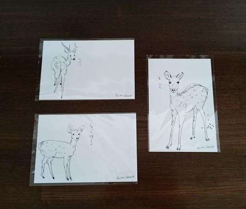 seikosketch 3枚入りポストカード
