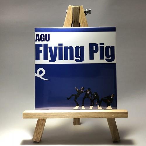 AGU / Flying Pig