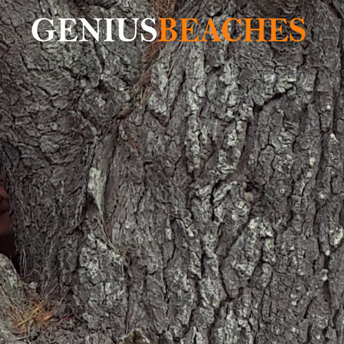 BEACHES / GENIUS