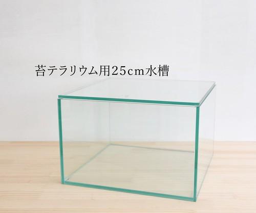 【ガラス容器】 苔テラリウム用 25cmガラス水槽 (250x250xh170mm)