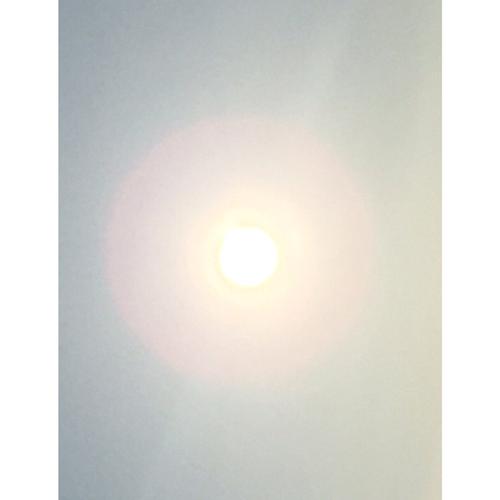 【貼ると場の浄化】朧火(おぼろび)