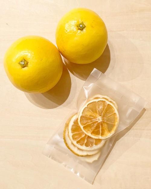 【高知県産 小夏】小夏は高知の夏を代表する柑橘。酸味と甘みのハーモニー