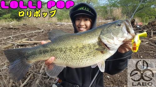 【LOLLI POP】 ロリポップ