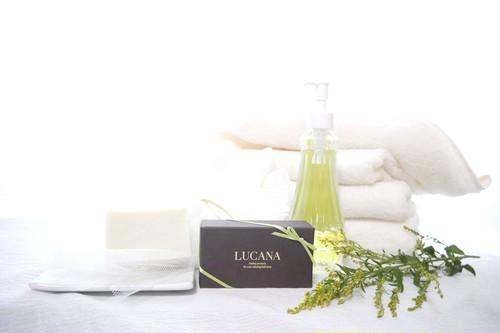 Lemon & Ho Leaf Soap(レモン ホーリーフ ソープ)