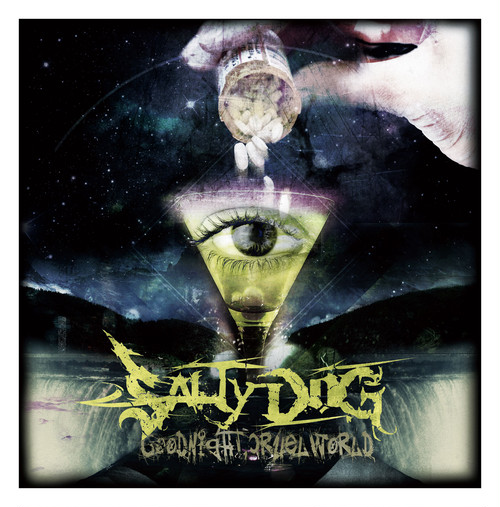 SALTY DOG/Goodnight, Cruel World【CD】