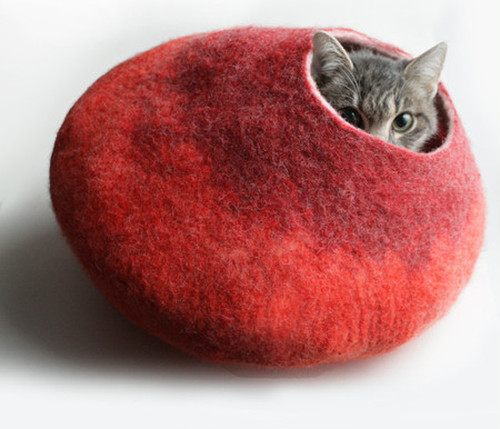 Cat Cave by Vaivanat (Warm Orange + Red)