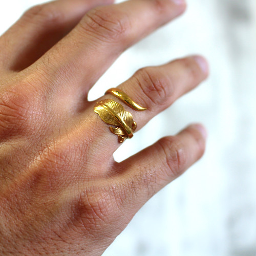 【即納】HORN & FEATHER RING (24kgf)