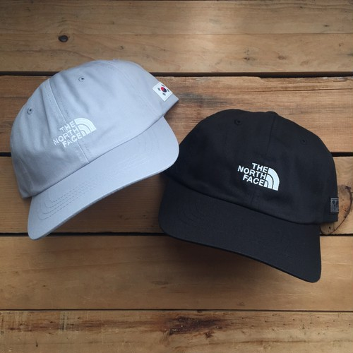US企画 The North Face international pack IC Ball Cap