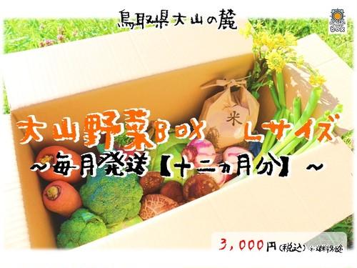 【毎月発送~十二ヵ月分~】大山野菜Box Lサイズ ※500円分野菜追加サービス