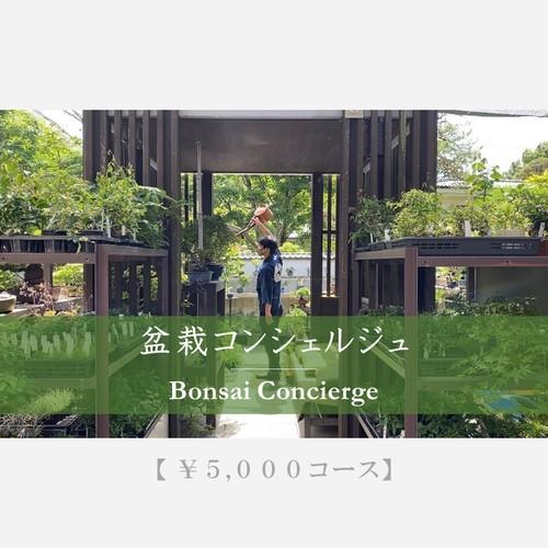 【盆栽コンシェルジュ】 5.000円コース