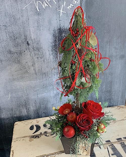 A0544) クリスマストピアリーアレンジメント