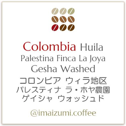【送料込】コロンビア ウィラ地区パレスティナ ラ・ホヤ農園 ゲイシャ - Colombia Huila Palestina La Joya Gesha - 300g(100g×3)