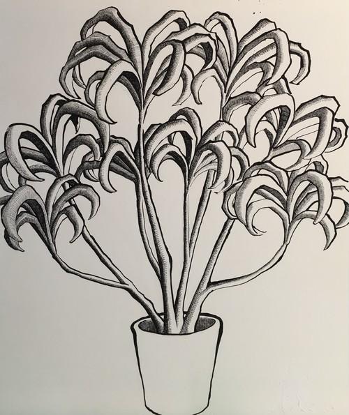 太久磨「自画像としての植物 ペン画49」