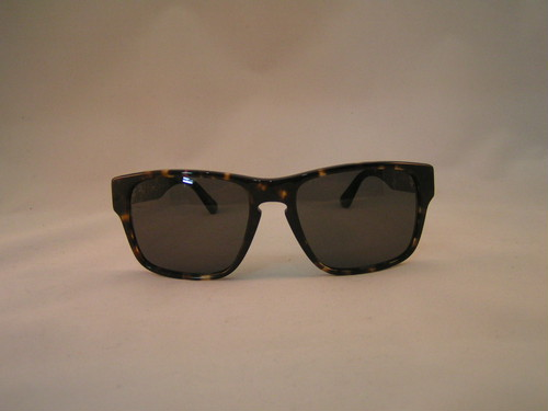 RAEN optics YUMA(TORTOISE)