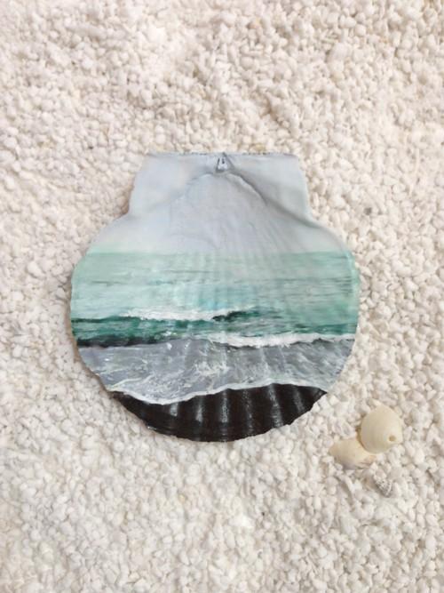 貝殻絵 (海のスケッチ)