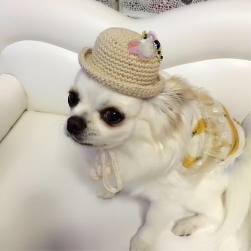 【ラスト1点】トンボ付き ナチュラル帽子