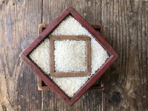 Wacca Farm 自然栽培米【毎月】定期便 ※新米発送は10月中旬下旬より
