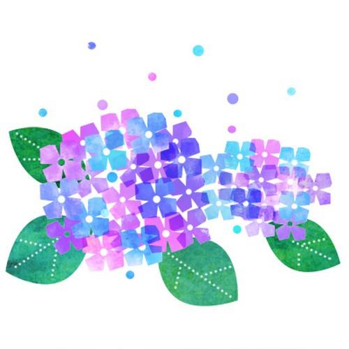 紫陽花の高解像度png形式イラスト Illustcup