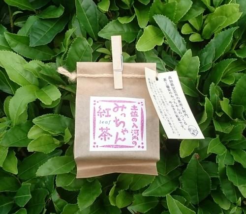 みっちゃん紅茶(小)