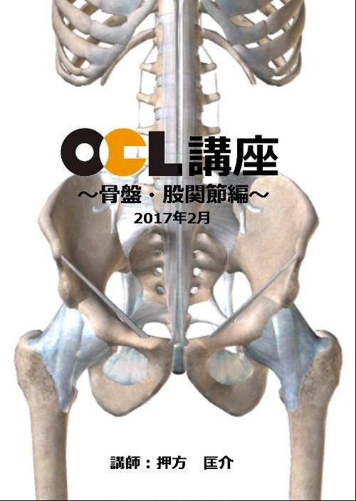使える解剖学【骨盤・股関節編】1枚組