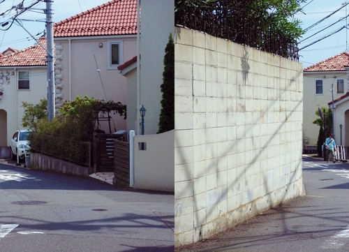 切断芸術写真『P9170134』糸崎公朗