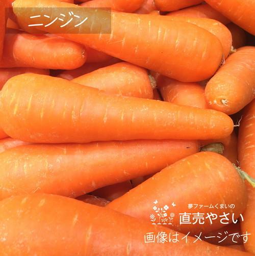 8月の朝採り直売野菜 : ニンジン 約400g 8月の新鮮な夏野菜 8月10日発送予定