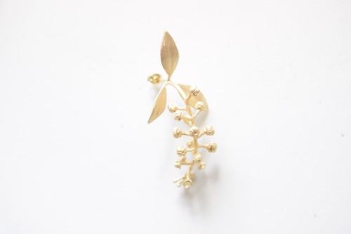 ヨウシュヤマゴボウPi(Gold)