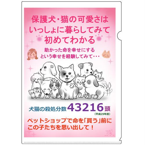 保護犬猫✦クリアファイルでメッセージ✦A5サイズ6種セット