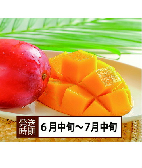 【コロナ緊急支援】沖縄県西表島産 アップルマンゴー 「900g」糖度16度以上50個限定