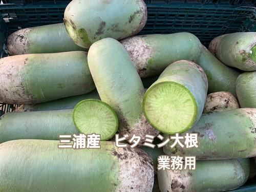 ビタミン大根(業務用)  10kg