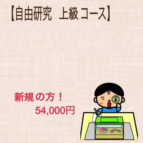 【新規】自由研究・上級コース