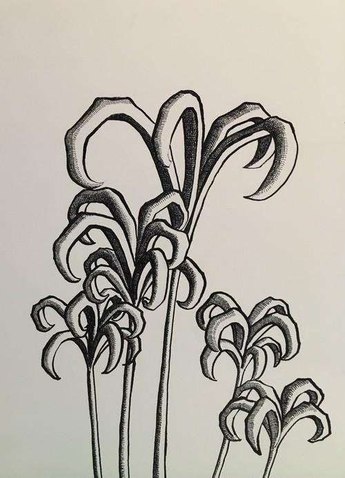 太久磨「自画像としての植物 ペン画52」