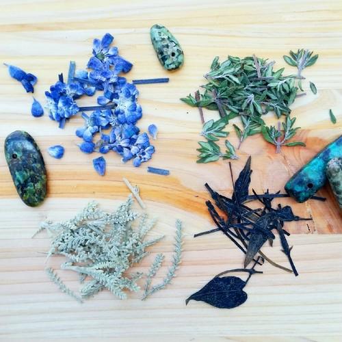 Pressed flowers  Herb 4点セット