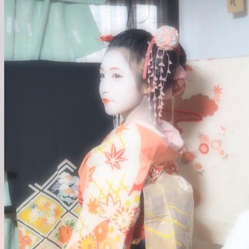 【舞妓体験モデル】dream Maiko Experience