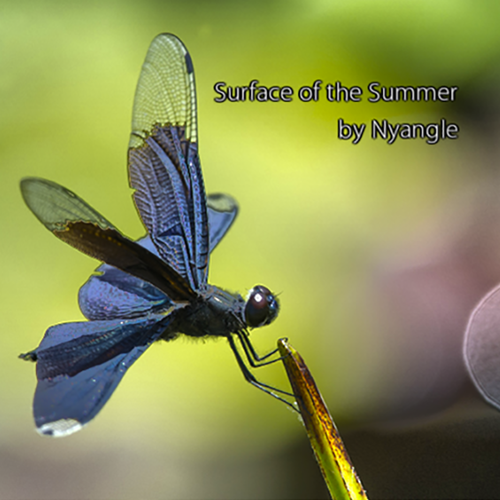 """""""Surface of the Summer"""" ---  electronica"""