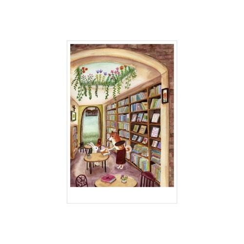 Bookcafe 亀岡亜希子 ポストカード 絵葉書