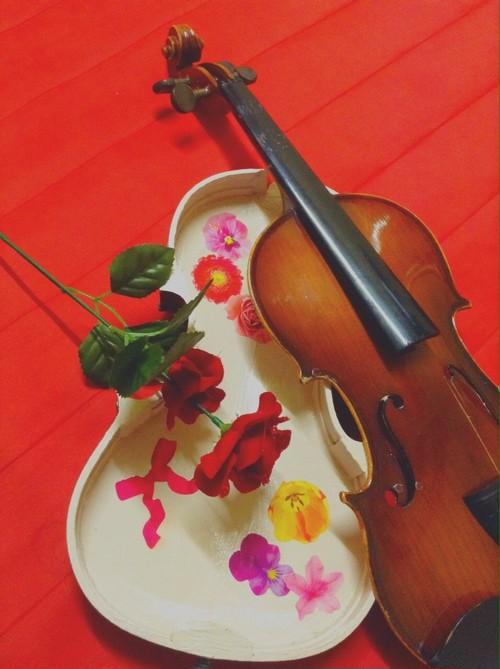 バイオリンのコスメケース