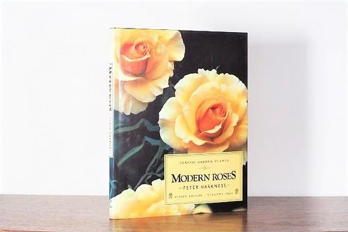 MODERN ROSES / visual book