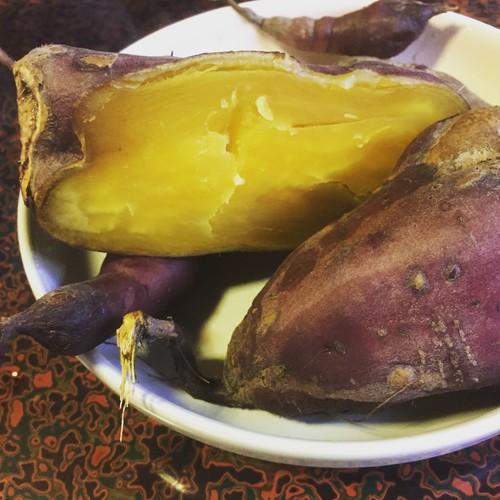 無農薬サツマイモ 3キロ