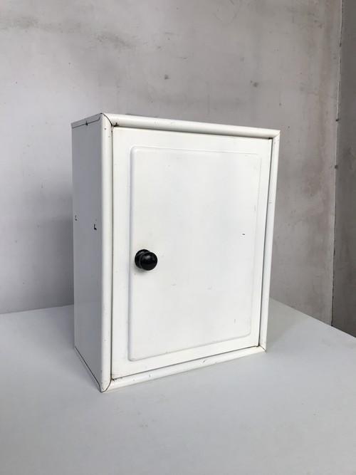 白いケース / オランダ